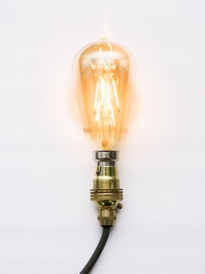 4w LED Squirrel cage light bulb